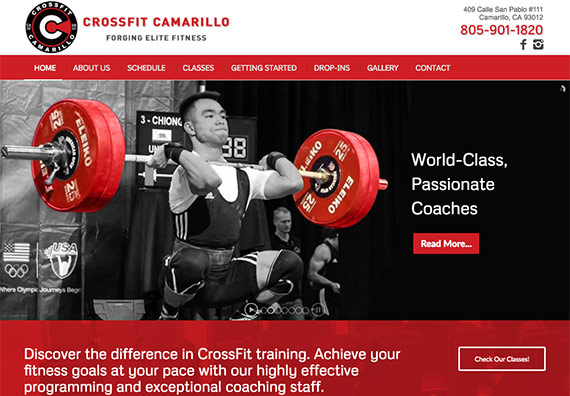 Julia Ionov at Creative365 web design for crossfit camarillo